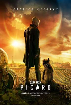 Star Trek - Picard - 1ª Temporada